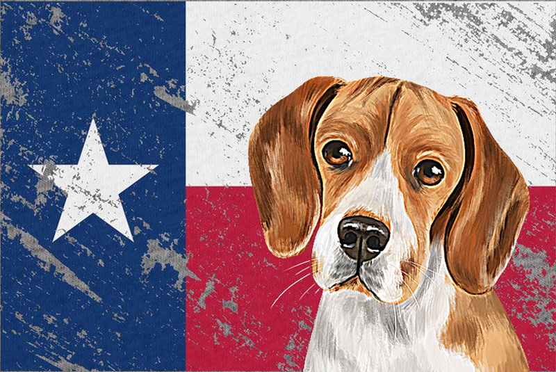 texas-distressed-beagle.jpg