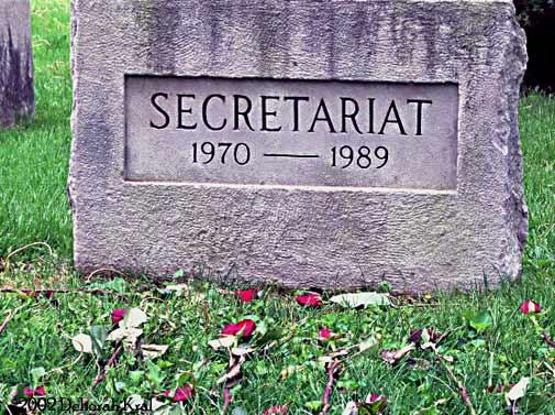 Secretariat.jpg