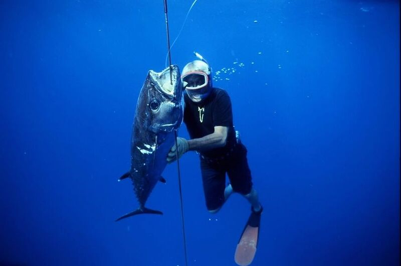 Dogtooth Tuna Corral Sea.jpg