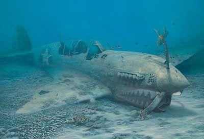 aac6a2d665f1f97739a781345cae15ca--scuba-diving-dive.jpg