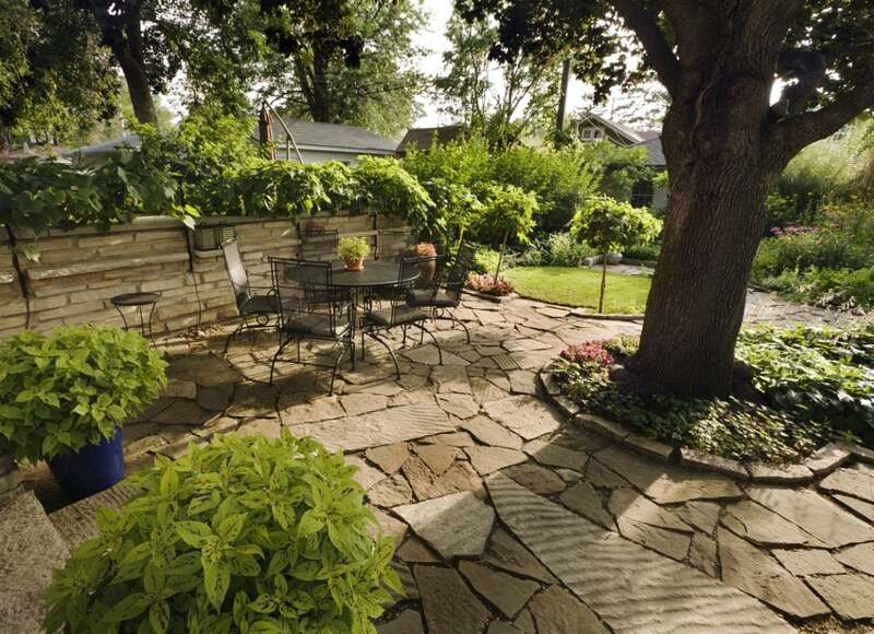 Build_Patio_when_Landscaping_Around_Trees.jpg